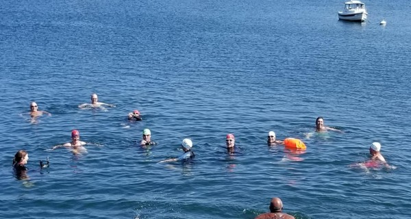Chester Harbour Swim